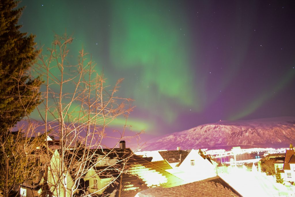 aurora boreale sopra i tetti