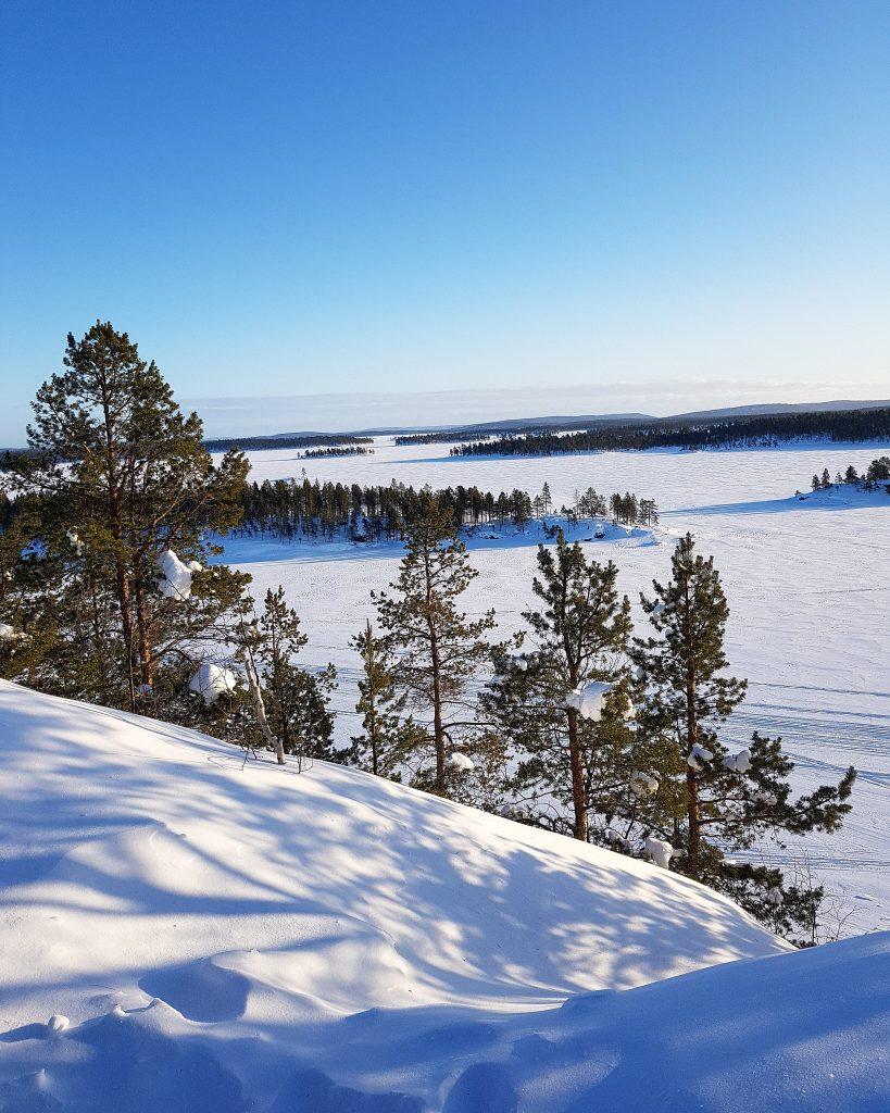 tundra finlandese