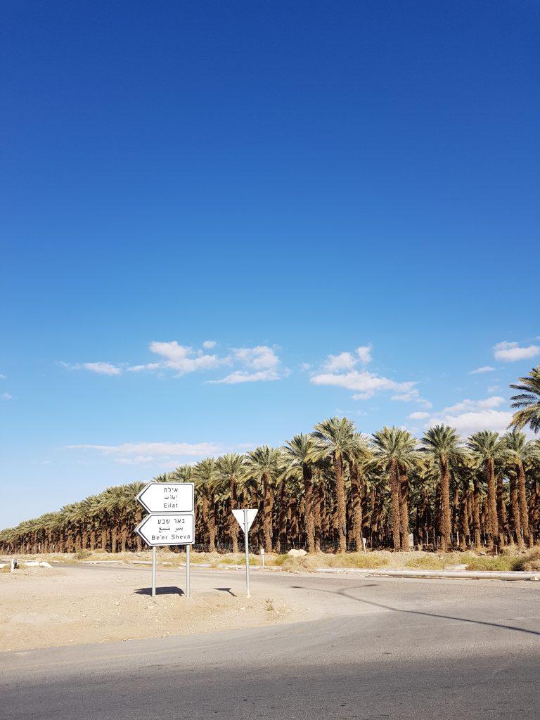 palme confine israele giordania